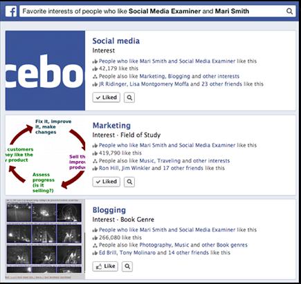 ck-facebook-page-interests-social-media-examiner-mari-smith